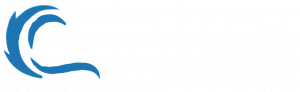 BLUE WAVE AUTO GROUP
