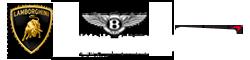 Car Logo right