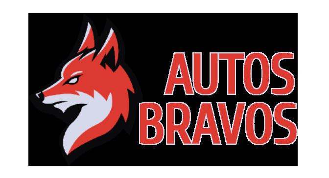 AUTOS BRAVOS LLC