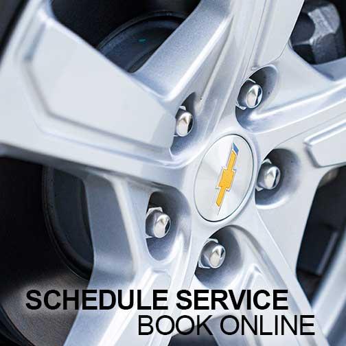 Scheduke service book online