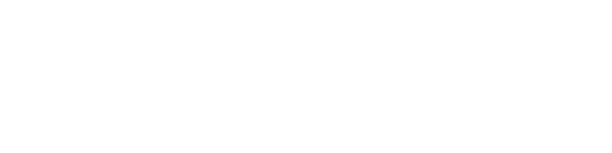 Michigan Auto Sales LLC