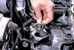 Car Thermostat Replacement >> What Is A Thermostat And What Does It Do Omega Automotive