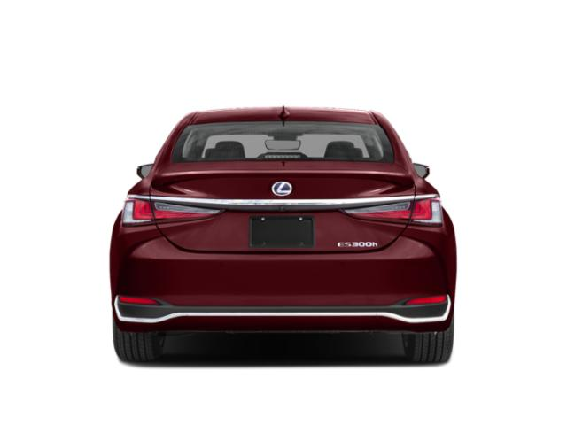 2019 Lexus ES 300h Luxury FWD - Rear View